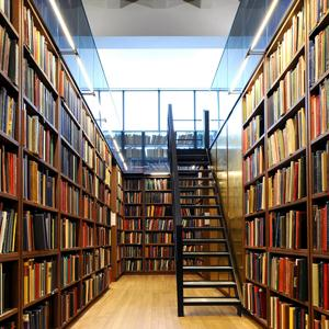 Библиотеки Куменов